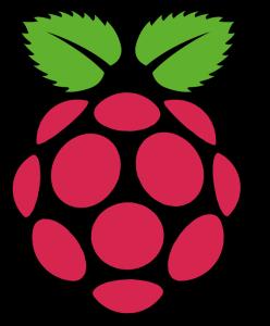 rpi - raspberry pi logo