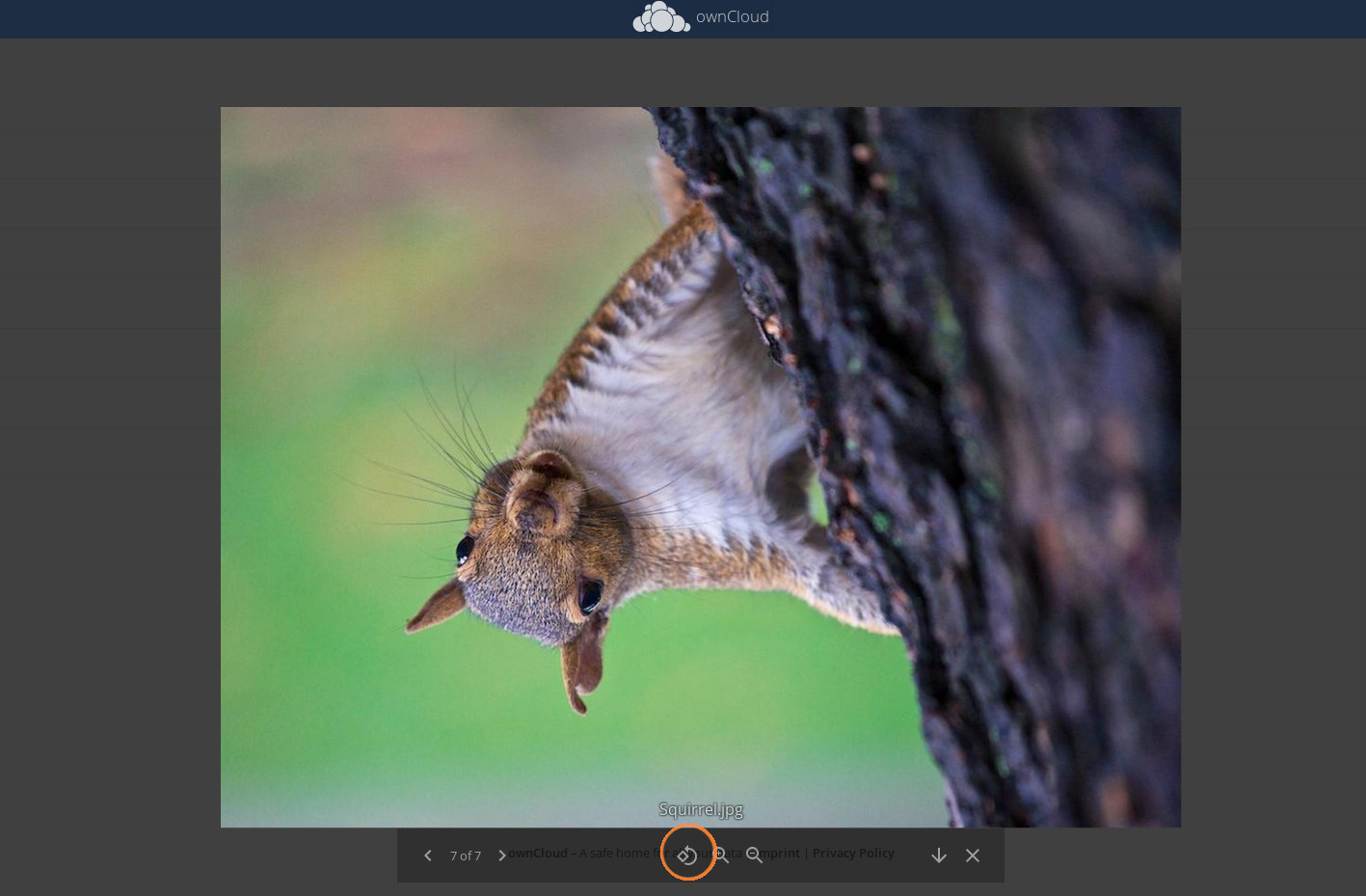 ownCloud media viewer image rotation