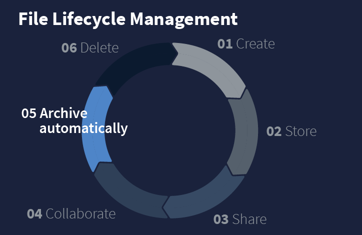 File Lifecycle Management